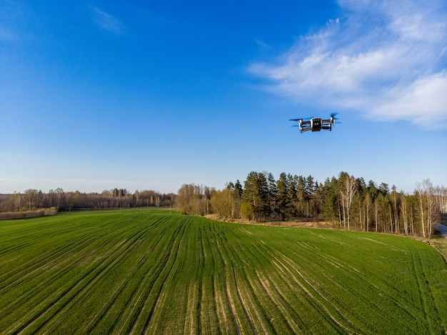 Dron sprawdzający wiosną zielone pola rolnicze ze świeżą roślinnością