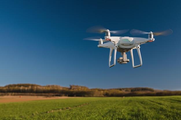 Drone quad helikopter na zielonym polu kukurydzy