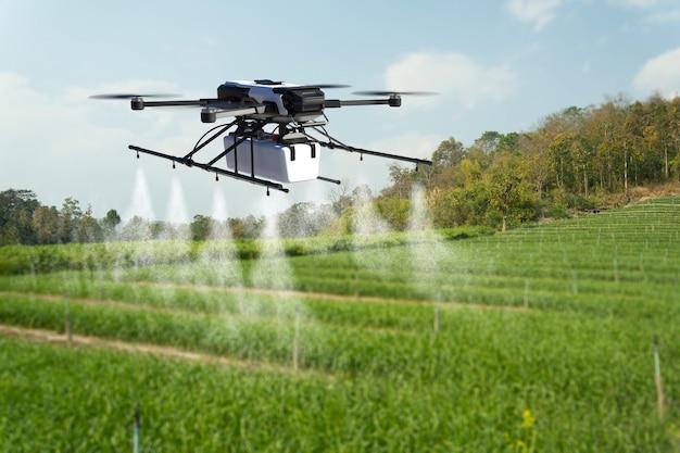 Drone rozpylania pestycydów na polu pszenicy