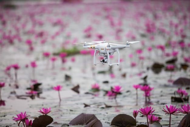 Drone samoloty unoszące się nad jeziorem różowego lotosu.