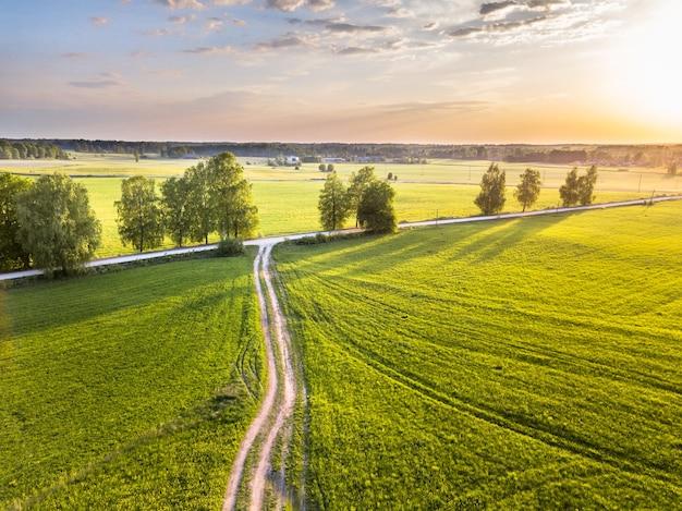 Drone zdjęcie skrzyżowania drzew w kolorowe wczesne wiosenne wschody słońca