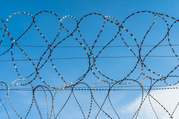 Drut kolczasty na tle błękitnego nieba zwoje stalowego drutu kolczastego na ogrodzeniu zakazanego terytorium ...