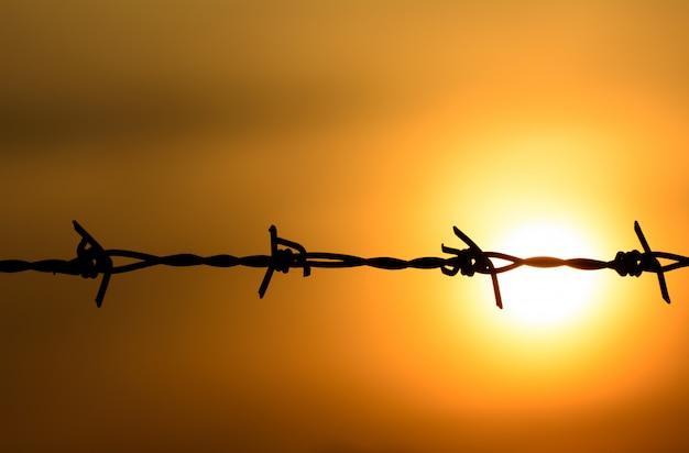 Drut kolczasty na zachód słońca