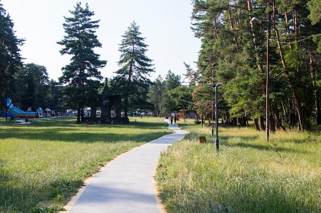 Drzewa i chodnik w parku, park w manglisi, gruzja
