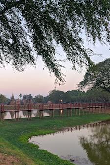 Drzewa i jezioro w historycznym parku sukhothai w tajlandii