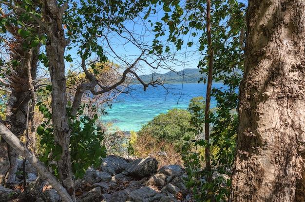 Drzewa i skały z tropikalnym morzem na wyspie