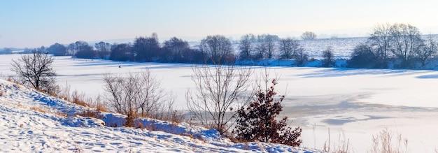 Drzewa nad brzegiem rzeki pokryte lodem i śniegiem w słoneczny zimowy dzień