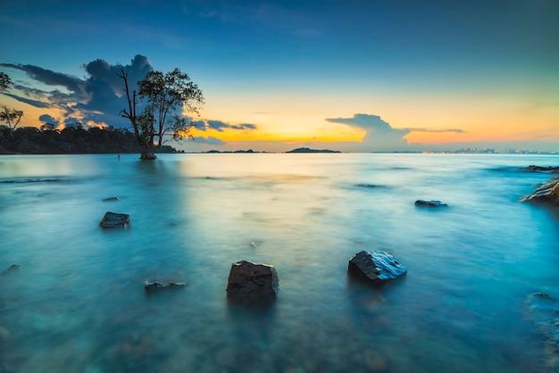 Drzewa namorzynowe i koralowce na plaży tanjung pinggir na wyspie batam o zachodzie słońca