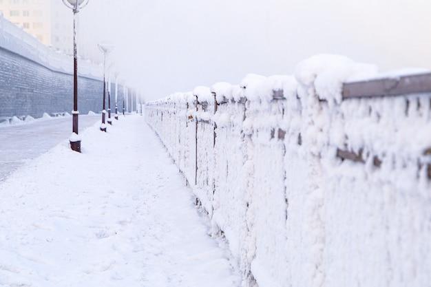 Drzewa pokryte śniegiem na syberii, w irkucku w pobliżu jeziora bajkał.