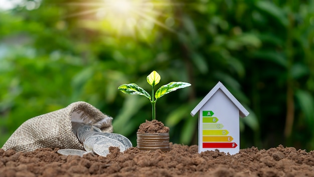 Drzewa rosną na stosach pieniędzy i energooszczędnych modeli domów, energooszczędnych pomysłów na dom. ekologiczne innowacje