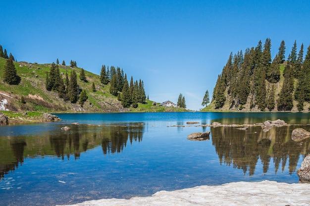 Drzewa w górach otoczonych jeziorem lac lioson w szwajcarii