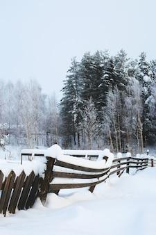 Drzewa w lesie pokryte śniegiem na pierwszym planie pochylony płot