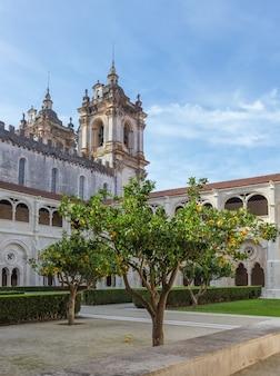 Drzewa w wewnętrznym ogrodzie klasztoru alcobaca