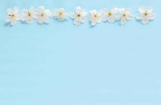 Drzewna kwiat granica na błękitnym tle. kwitnące wiosną