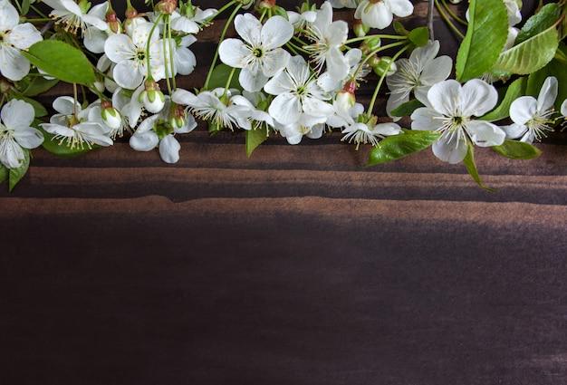 Drzewna kwiat granica na drewnianym tle. kwitnące wiosną