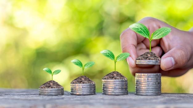 Drzewo, które rośnie na stosie pieniędzy i rękach inwestorów, pomysłów na inwestycje finansowe i start-upów biznesowych.