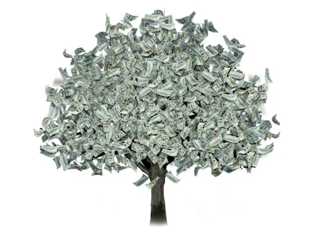 Drzewo pieniędzy z dolarów zamiast liści na białym tle.