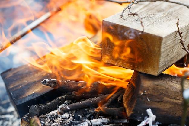 Drzewo płonie w ogniu. piknik na świeżym powietrzu. preparat do smażenia mięsa