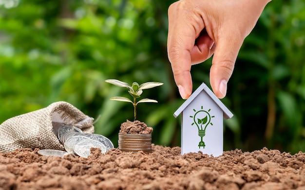 Drzewo rosnące na stosie pieniędzy i trzymająca się za rękę koncepcja nieruchomości model domu oszczędności na zakup domu
