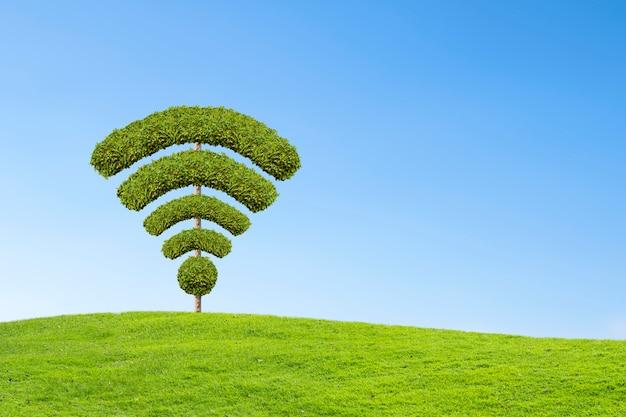 Drzewo symbol wifi, wykonane przez kształt krzewów.