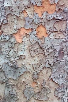 Drzewo teksturowanej tło. drewniana konstrukcja. kora sosnowa