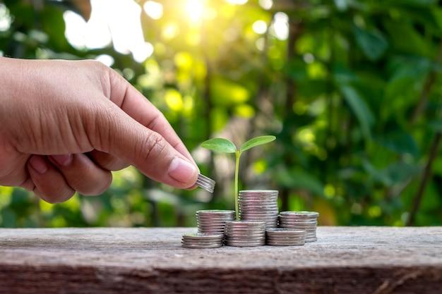 Drzewo z zielonymi liśćmi wyrastającymi z monety i zamazane naturalne zielone tło