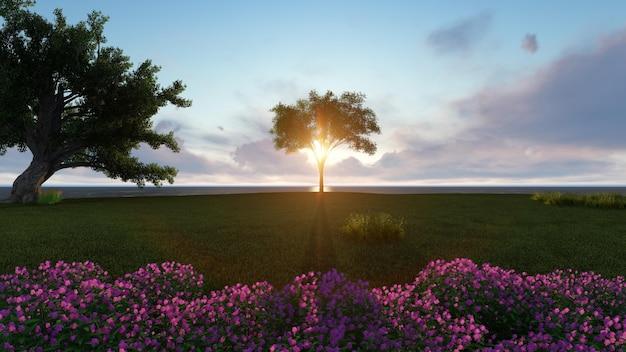 Drzewo ze słońcem tuż za w zielonym polu