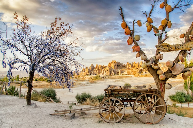 Drzewo życzeń z glinianymi garnkami w kapadocji. prowincja nevsehir, kapadocja, turcja
