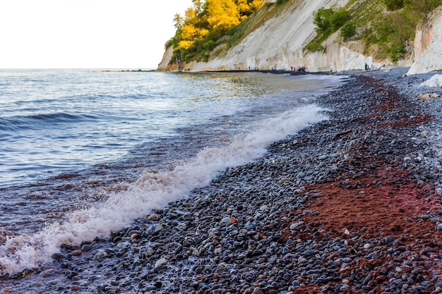 Duński chalk cliff mns klint, wyspa mn na morzu bałtyckim