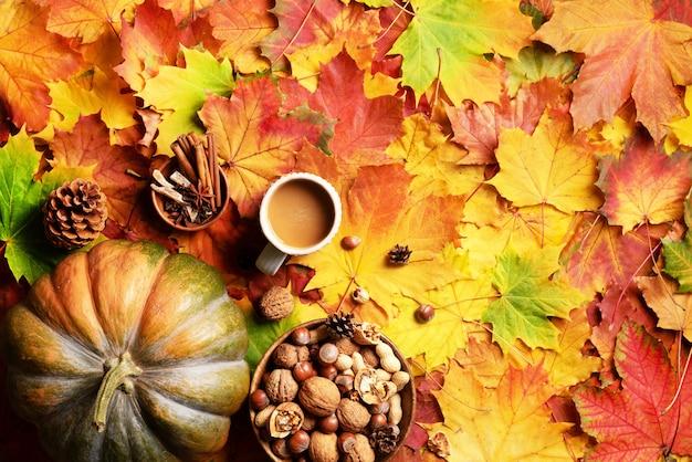 Duża dynia, drewniana miska orzechów, filiżanka kawy, stożek, cynamon