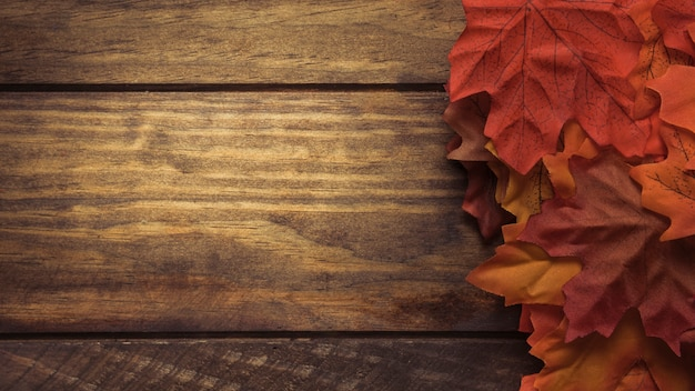 Duża kompozycja jesiennych liści klonu
