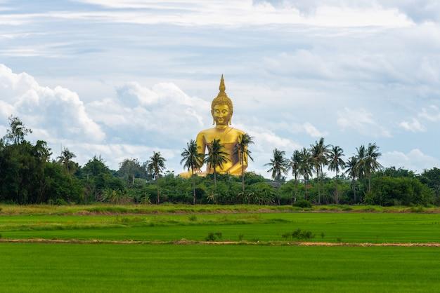 Duża złota buddha statua przy buddyjską świątynią