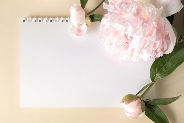 Duże beżowo-różowe kwiaty piwonii i notatnik na jasnym tle papieru