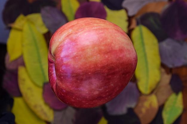 Duże czerwone dojrzałe jabłko, za nim, w tle bardzo rozmyte tło, dużo kolorowych jesieni