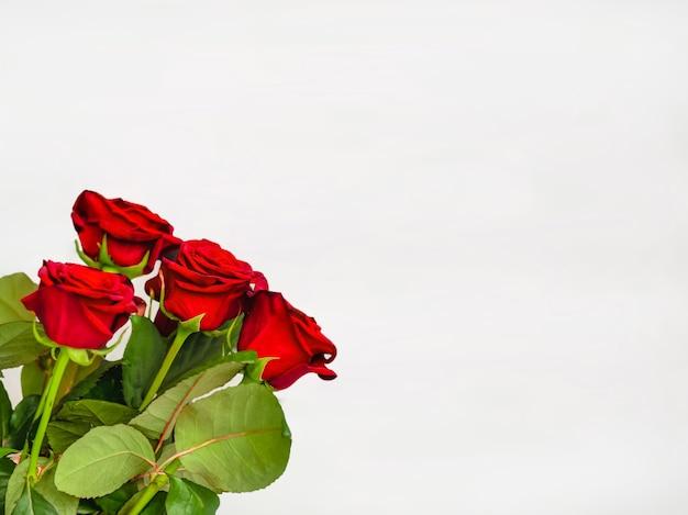 Duże czerwone róże na białym tle uroczystość urodzinowa pomysł na prezent czerwone kwiaty luksusowy bukiet