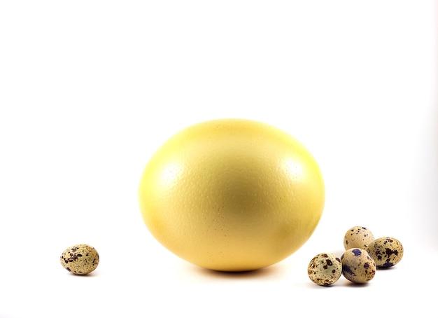 Duże jaja strusie w koszu na białym tle