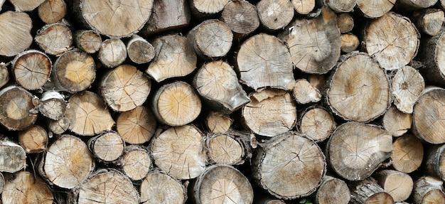 Dużo drewna
