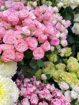 Dużo róż krzewiastych różnych odmian, odcieni. kwiaty w kwiaciarni na prezenty. niesamowicie piękne róże
