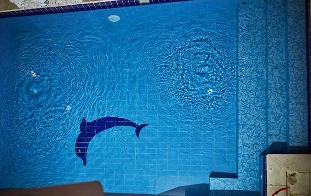 Duży basen wyłożony niebieskimi płytkami z delfinem, oświetlony nocą