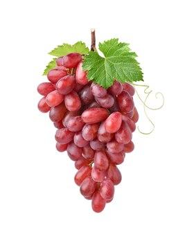 Duży bukiet czerwonych winogron z zielonymi liśćmi na białym tle
