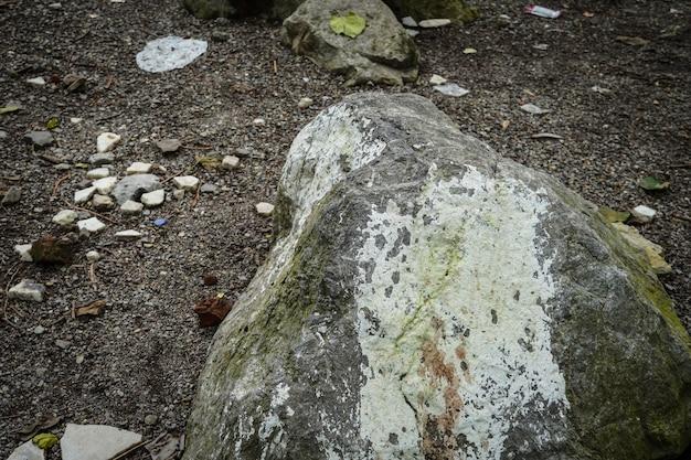 Duży kamienny obraz w lesie