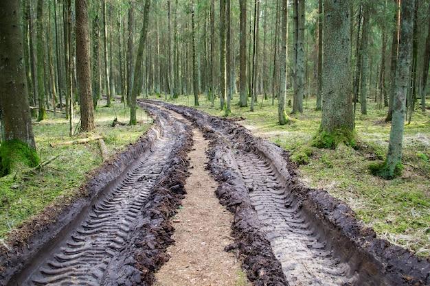 Duży odcisk opony samochodowej na śladach ziemi w lesie