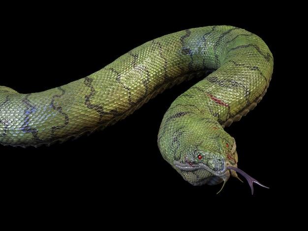 Duży pełzający wąż. renderowanie 3d