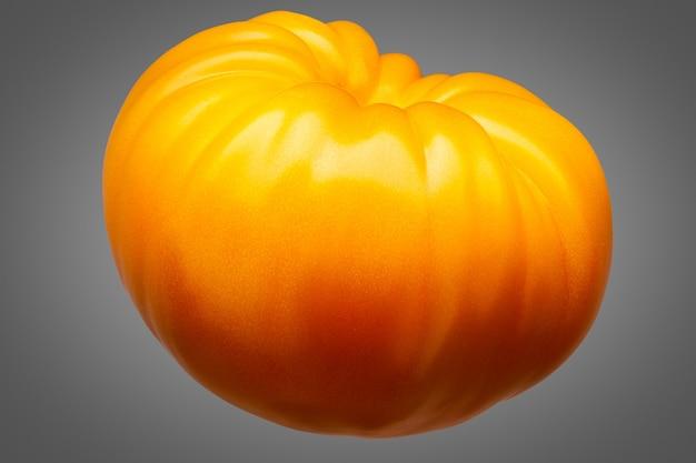 Duży pyszne pojedynczy żółty pomidor na białym tle na szarym tle ze ścieżką przycinającą