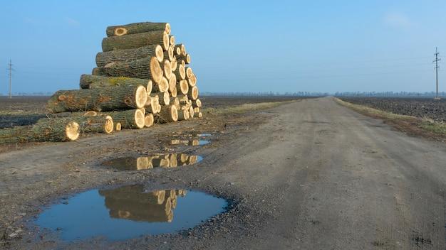 Duży stos drewna opałowego, skutki wylesiania, w pobliżu wiejskiej polnej drogi przez pole.