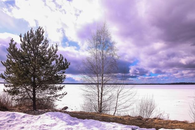Duży widok obrazu zimowego lasu lodowego jeziora. panoramiczny krajobraz z ośnieżonymi drzewami, błękitne niebo z chmurami, niesamowite zamarznięte jezioro z lodowatą wodą. tło sezonowej zimy pochmurno chłodną pogodę. skopiuj miejsce