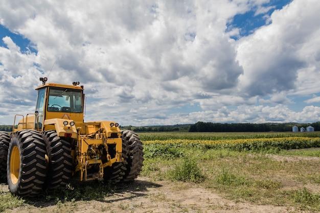 Duży żółty traktor na słoneczniku i polu kukurydzy pod błękitnym pochmurnym niebem