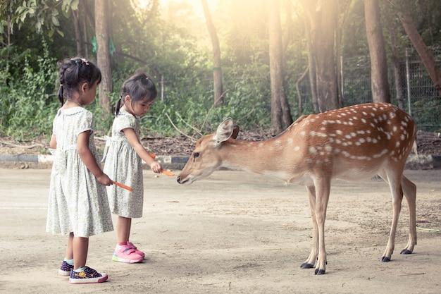 Dwa azjatykciej małej dziewczynki karmi rogacza w zoo