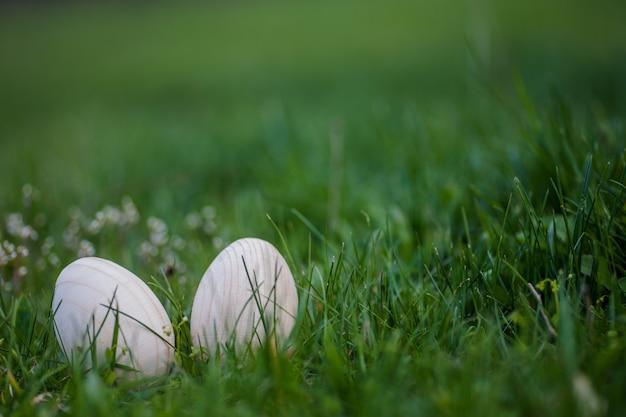 Dwa białe drewniane pisanki z gałęzi moreli w zielonej trawie. tło wielkanoc. szukaj jajek na wielkanoc. opyspace
