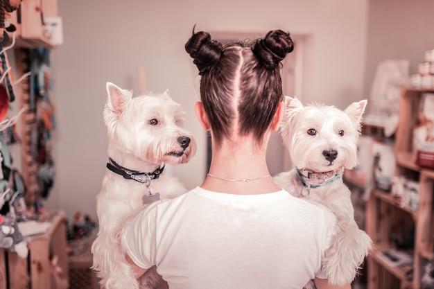 Dwa białe psy. ciemnowłosa młoda kobieta z dwoma włosami w kok, trzymająca dwa białe psy